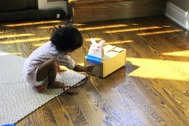 Asha and the cardboard cat