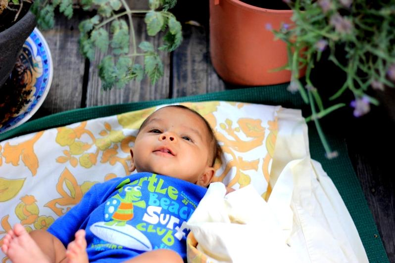 Arjun on balcony looking at plants