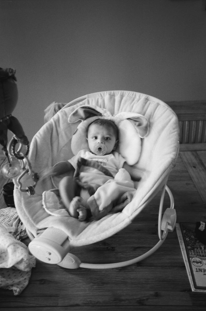 Family Portraits in Chicago by Dottie Brackett