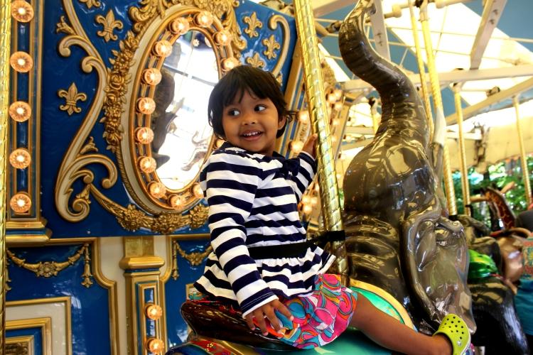 asha at ashboro zoo
