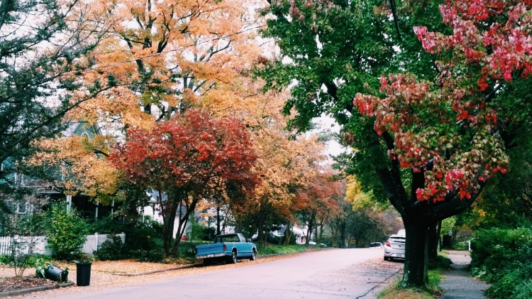 Fall in Historic Oakwood, Raleigh 2015