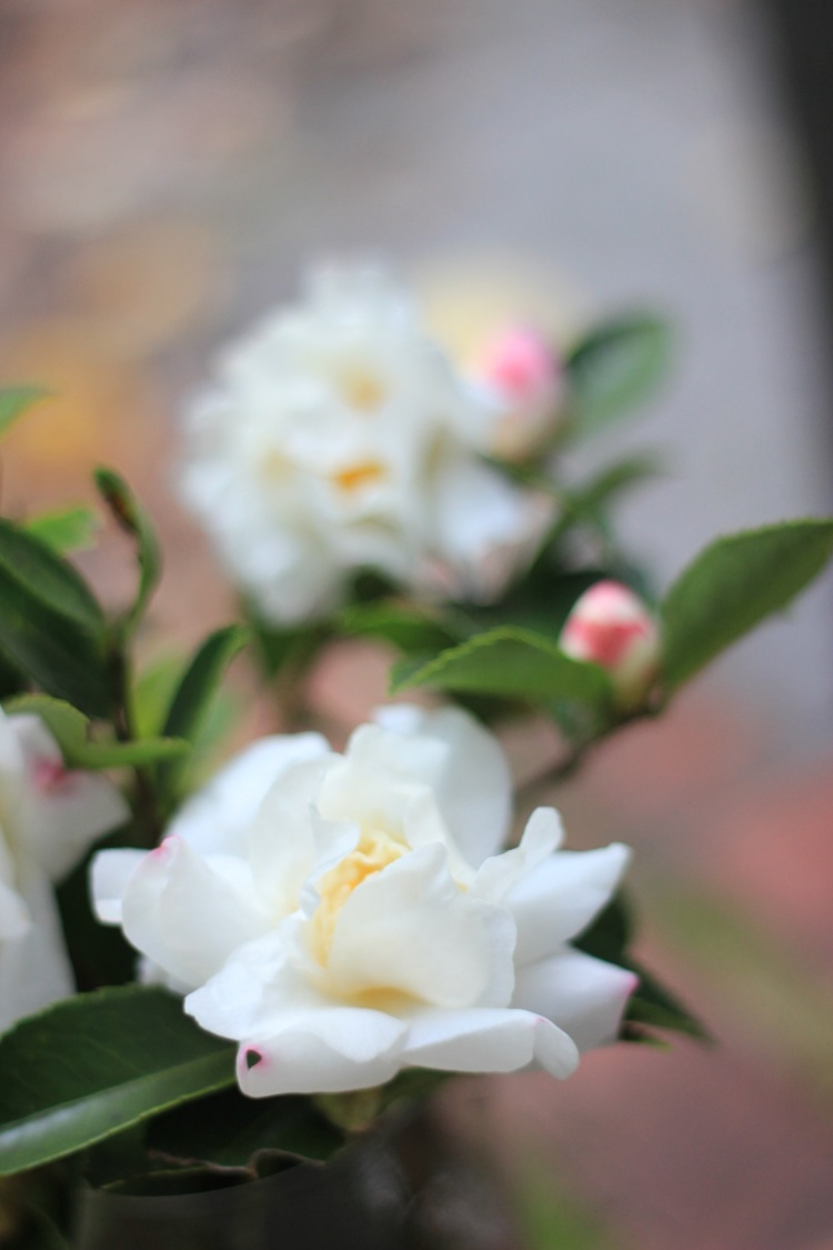 Fall Garden Flower Arrangement