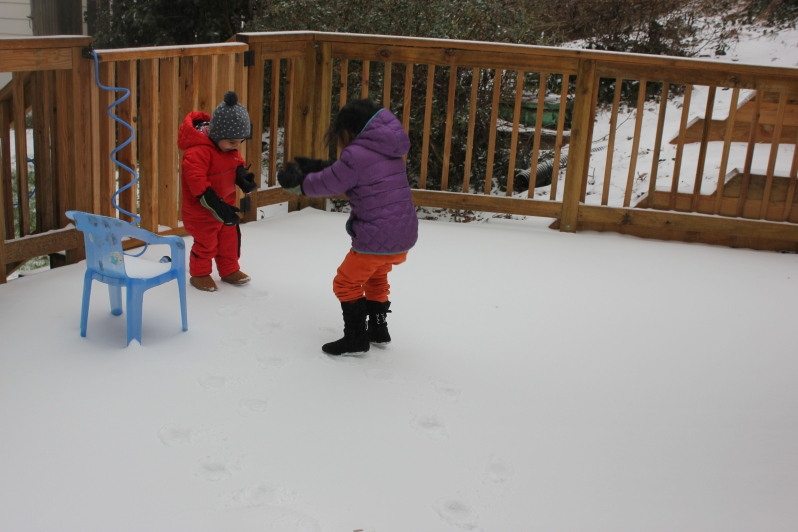 Snow Day in Raleigh 2017